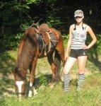 Школа конного спорта